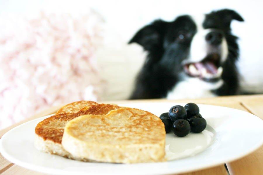 Dog Treat Pancake Recipe | Pretty Fluffy