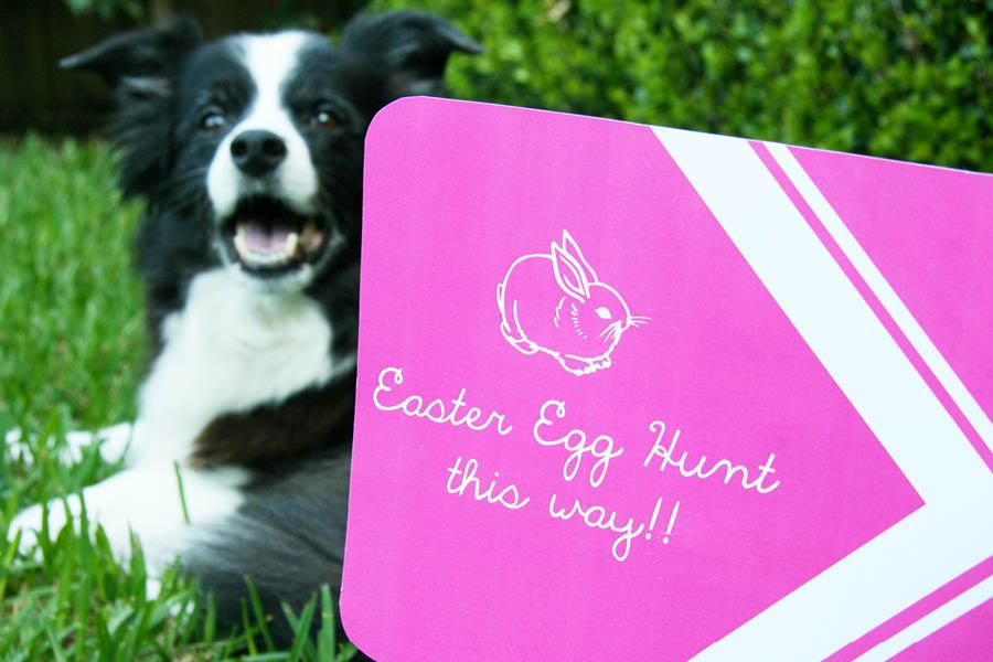 Easter Egg Hunt Free Printable   Pretty Fluffy