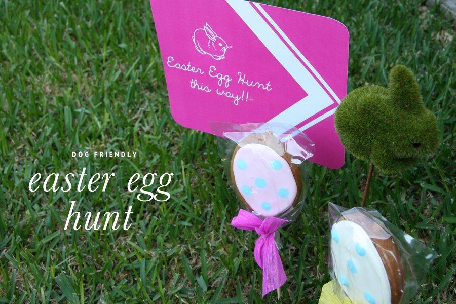 Pet Friendly Easter Egg Hunt   Pretty Fluffy