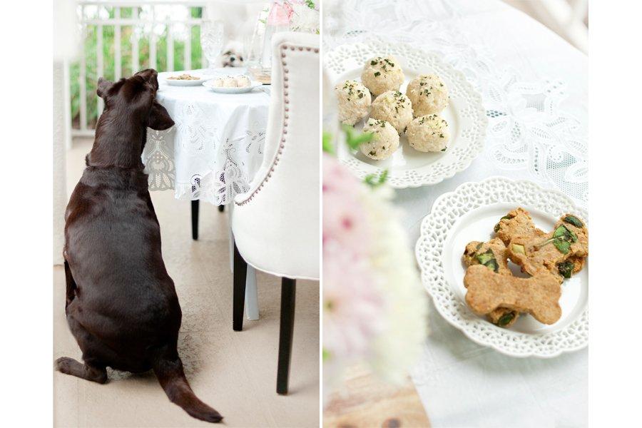 Dog Friendly St Patrick's Brunch