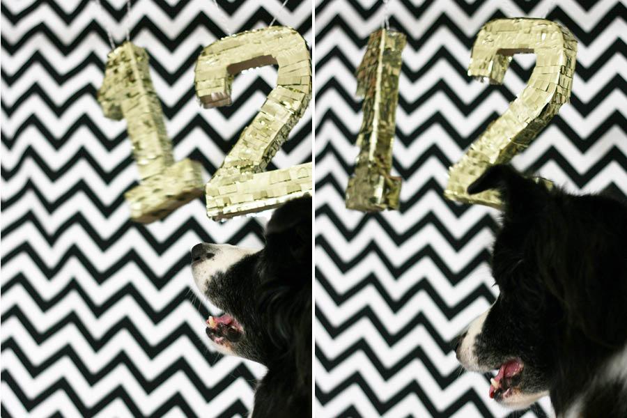 DIY Puppy Pinata Instructions | Pretty Fluffy