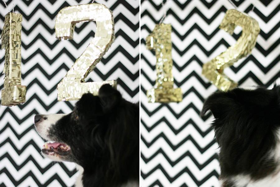 Dog Treat Puppy Pinata | Pretty Fluffy