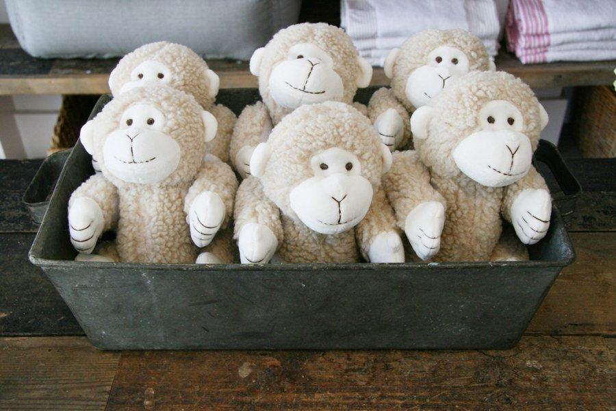 Mungo & Maud Pet Toys | Pretty Fluffy
