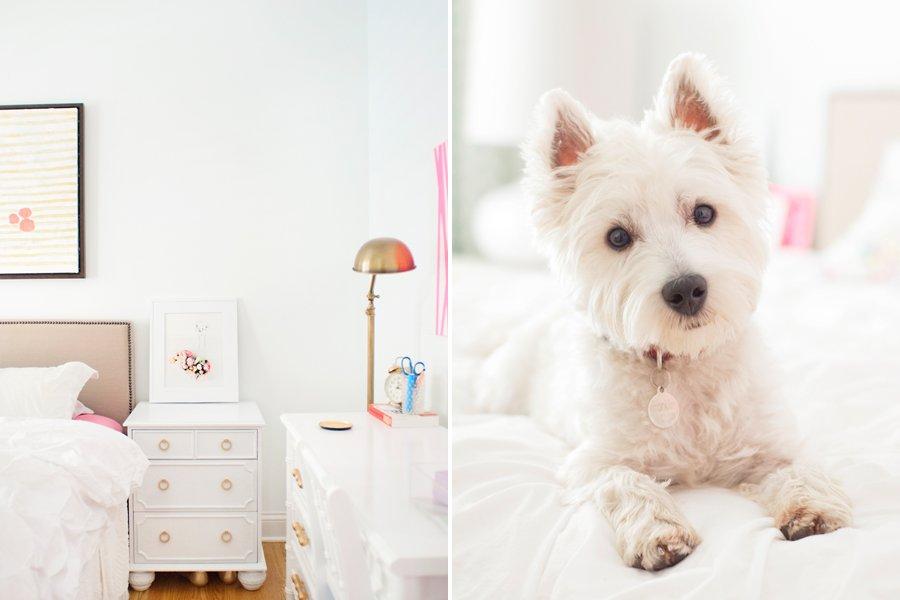 Jess Lively Pet Friendly Home Tour   Pretty Fluffy