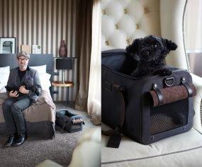 Cloud 7 and Tumi Travel Pet Accessories | Pretty Fluffy