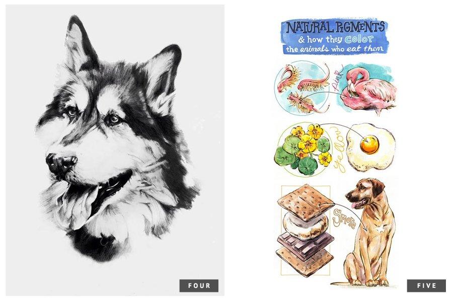 7 of the Best Pet Portrait Artists