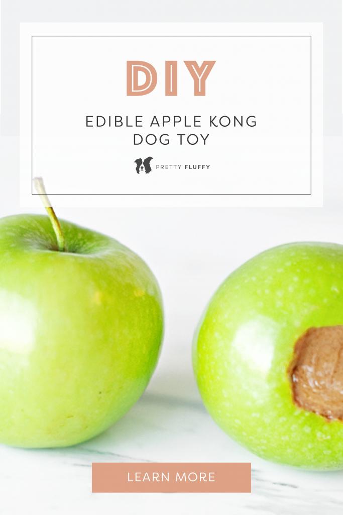 DIY: Edible Apple Kong Dog Enrichment Toy