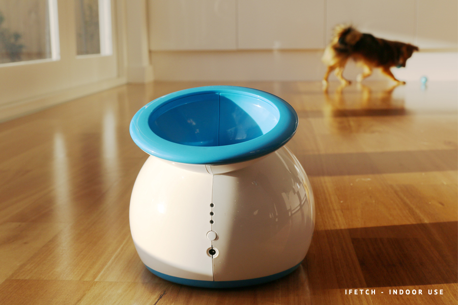 Full review of the iFetch Frenzy, iFetch Too and iFetch Original automatic ball launchers and fetch dog toys. Includes which toy is right for your dog!