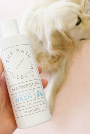 Is magnesium good for dogs? Yes! We list the health benefits of magnesium for dogs - including the best products and how to use them in simple steps.