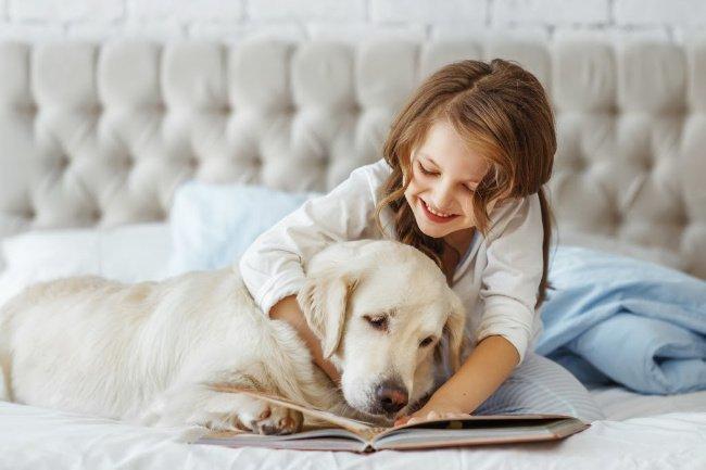12 Teacher Recommended Books for Children That Love Dogs - Pretty Fluffy