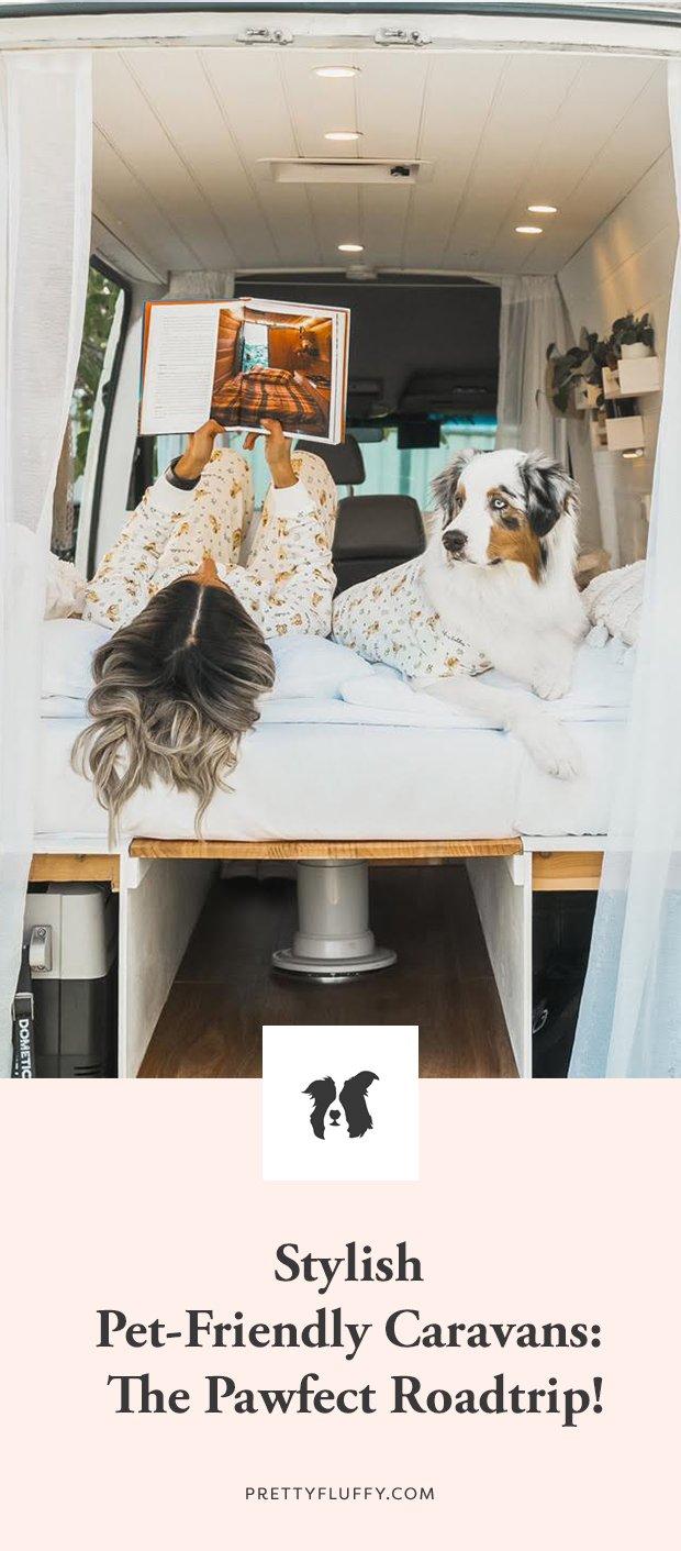 Stylish pet-friendly caravans and campervans - Stylish Hound x Camplify