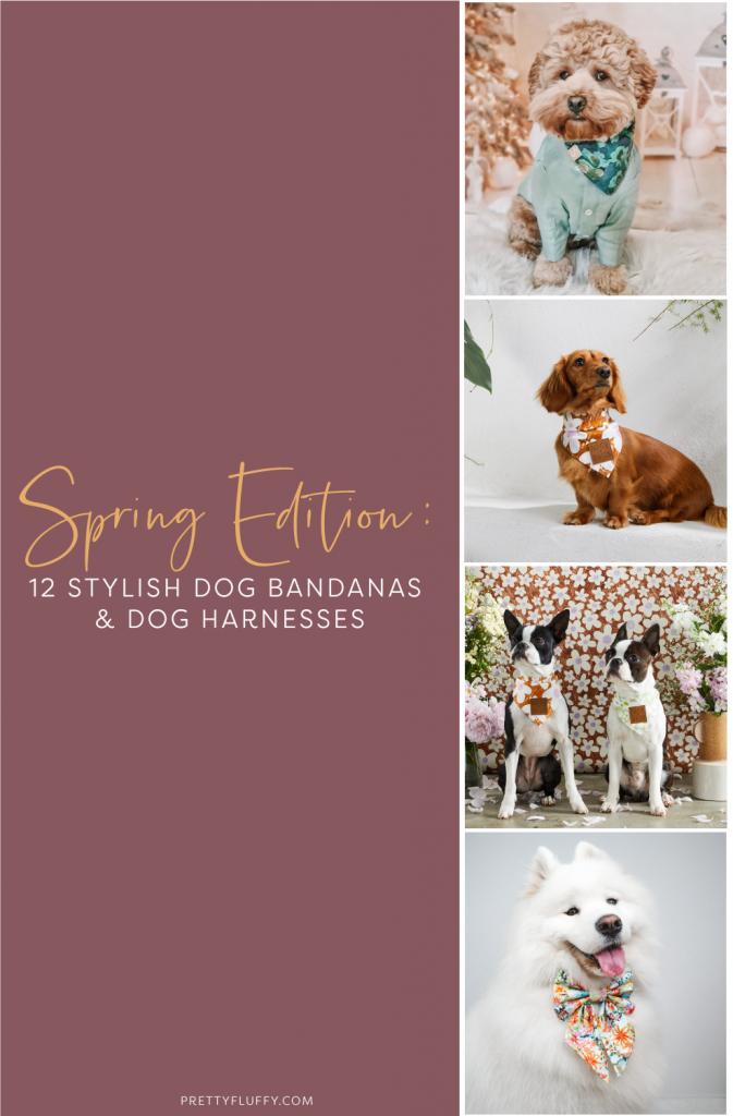 Spring Edition: 12 Stylish Dog Bandanas & Dog Harnesses