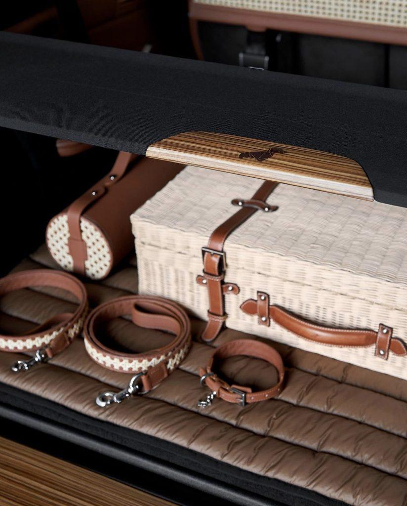 Luxury Pet-Friendly Travel Kit: BMW Italia X Poldo Dog Couture