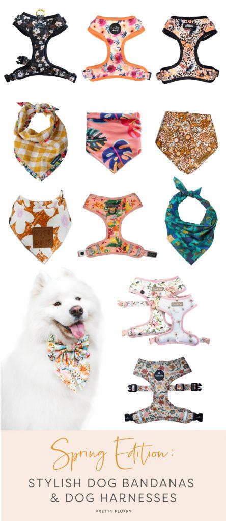 Spring Edition: 12 Stylish Dog Bandanas & Dog Harnesses by Australian Dog Brands