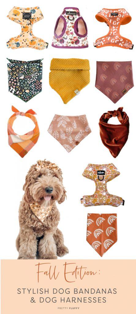 Fall Edition: 12 Stylish Dog Bandanas & Dog Harnesses - Pretty Fluffy