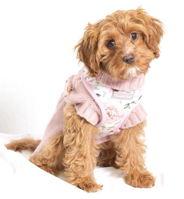 Le Jardin Reversible Dog Harness by Coco & Pud - Spring Dog Bandanas & Dog Harnesses by Australian Dog Brands - Pretty Fluffy
