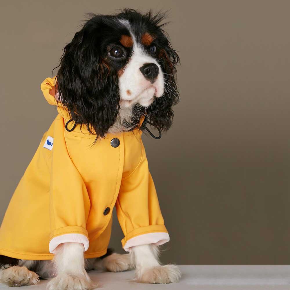 Dog Raincoat Pony Parasoly Yellow by Hunting Pony | 9 Stylish Dog Raincoats More Trendy Than Yours - Pretty Fluffy