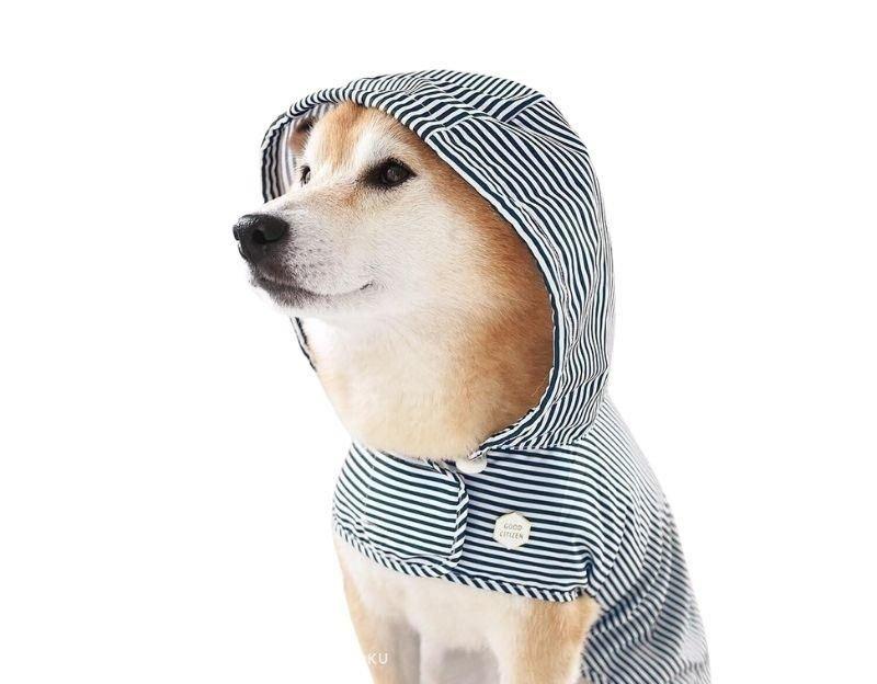 Dark Navy Rainbreaker by Merrypongo - 9 Stylish Dog Raincoats More Trendy Than Yours | Pretty Fluffy